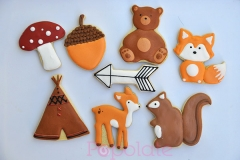 Woodland teepee theme cookies
