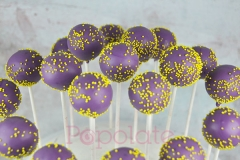 Relay for Life cake pops