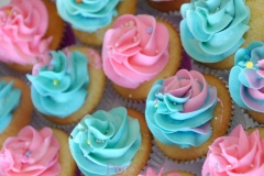 Pink and Blue Cupcakes