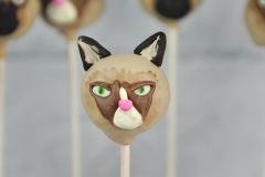 Instagram grumpy cat cake pop