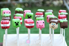 Minecraft cake pops, creeper, Steve, TNT