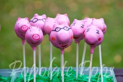 Peppa Pig and family cake pops
