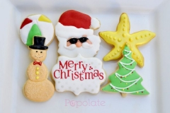 Christmas cookie gift set, 6 iced cookies in a clear window box