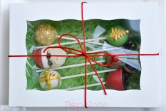 Aussie Christmas cake pop gift set