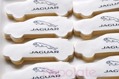 Jaguar Land Rover epace cookies