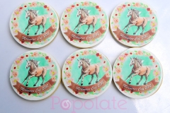 Melbourne Cup cookies; horse