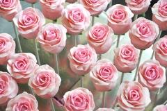 Pink rose cake pops