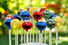 Elmo, Oscar, Cookie MOnster and Big Bird cake pops