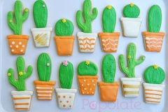 Cactus cookies for Yates Australia