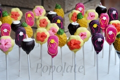 Tropical cake pops